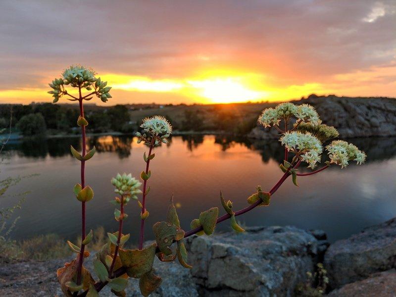 закат,лето,пейзаж,краски,зелень,солнце,небо,река,рекаднепр,landscape,сюжет,природа,nature,sky,облака,вода,отдых,красота, ***photo preview