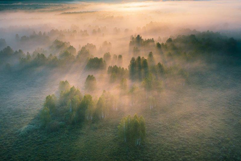 алтайскийкрай, алтай, тигирекскийзаповедник, туман Проявка туманаphoto preview