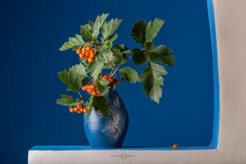 Натюрморт с оранжевыми ягодамиphoto preview