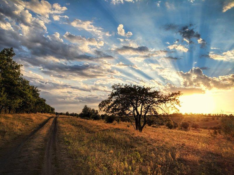 пейзаж,небо,лучи,солнце,landscape,сентябрь,вечер,дорога,road,sky,краски,облака,вид, Там, где бывает закат, - вскоре наступает рассветphoto preview