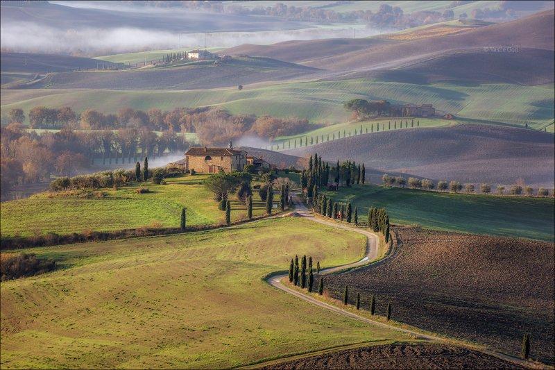 italy,pienza,italia,дымка,италия,тоскана,кипарис,toscana,осень,tuscany,cipressi,belvedere \