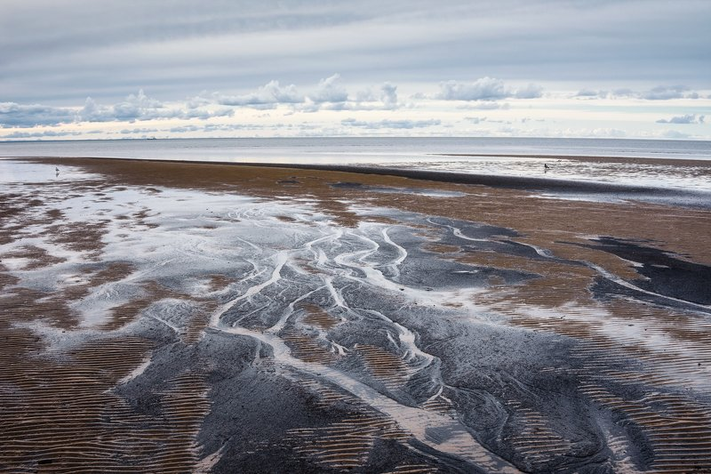 сентябрь, отлив, море, белое, берег, вода, облака Отлив. Берег Белого моря.photo preview