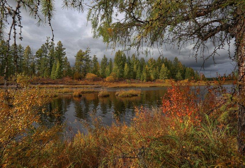 нерюнгри, осень, якутия, река_горбыллах, осень_в_якутии, осенний_пейзаж Сентябрьphoto preview