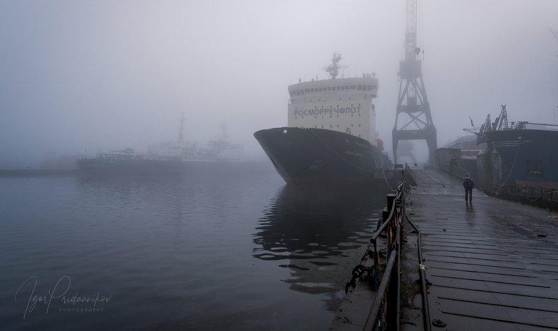 мурманск, туманы, ледоколы Утро туманноеphoto preview