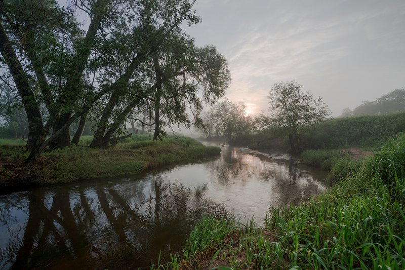 Утро на Малой Истреphoto preview