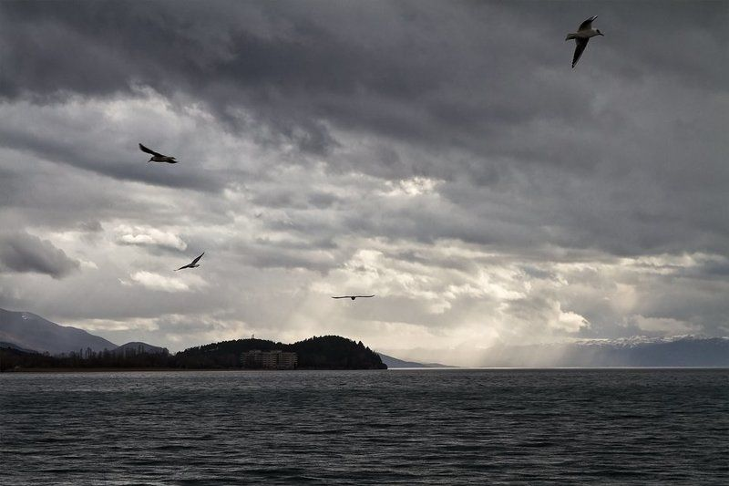 Охридского озераphoto preview