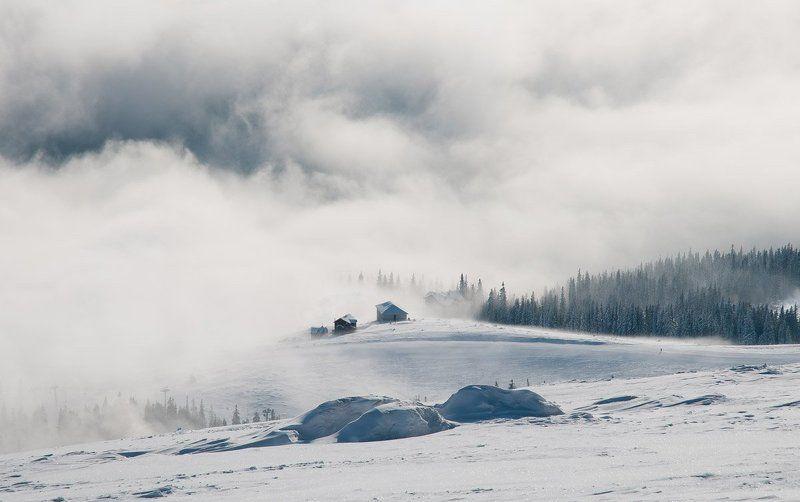 Туманное утро в Карпатахphoto preview