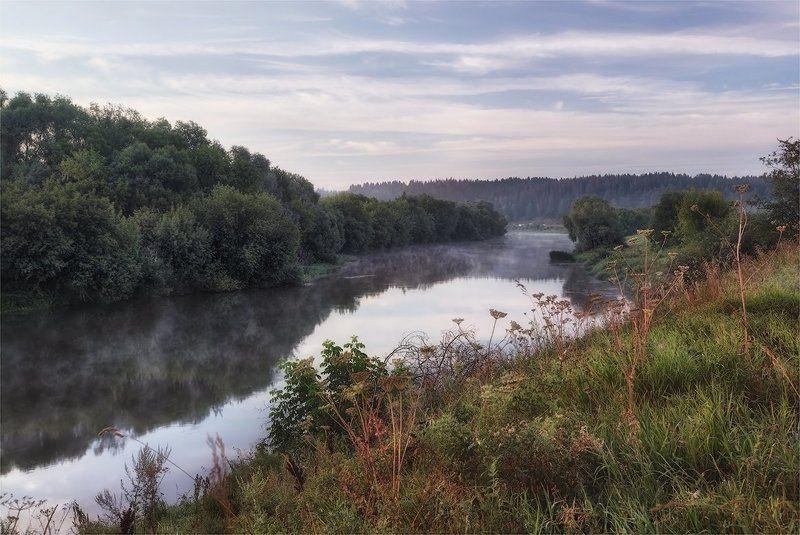 река, утро, лето про летоphoto preview
