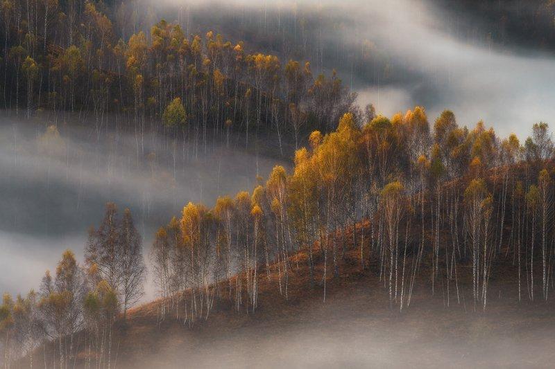 Осень в Румынииphoto preview