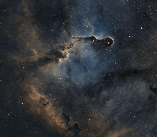 Elephant trunk nebula, Cepheus