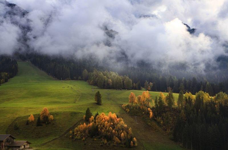 Альпийские лугаphoto preview