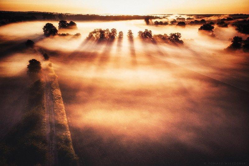 drone, poland, fields, mist, fog, morning, sunrise, sunset, awesome, adventure, amazing, air, autumn, mavic, dji, landscape, countryside The sea of mistsphoto preview