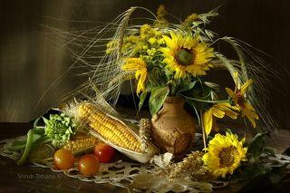 Подсолнухи с кукурузой