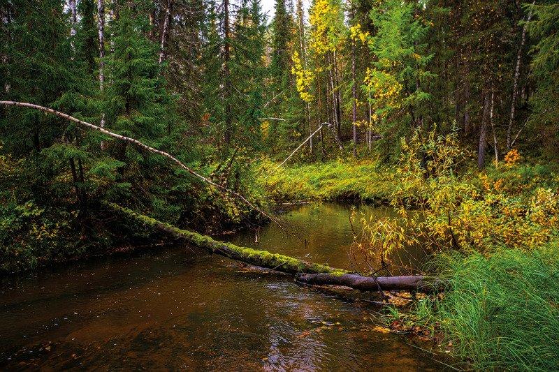 печора,осень, радуга, небо, Осень в Печореphoto preview