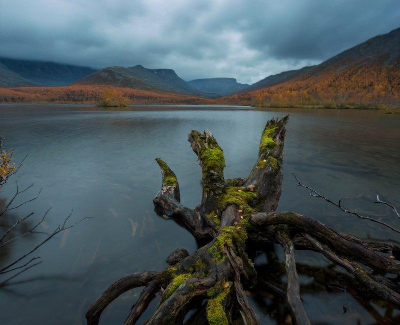хибины, вудъявр, кольский, осень, озеро, выдержка Кольский пеньphoto preview