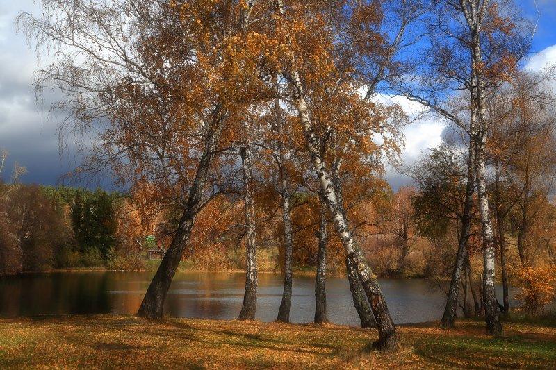 Осень в Зиморяхphoto preview