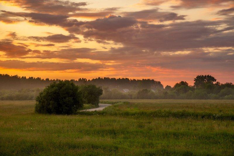 архангельская обасть, белая ночь, русский север, заброшенные деревни, закат, летний вечер, туман Кочневскаяphoto preview