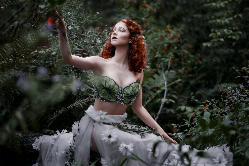forest #covid The Magic of Forest photo preview