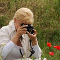 Portrait of a photographer (avatar) Алёна Шевцова