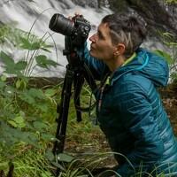Portrait of a photographer (avatar) SAMPEDRO SORAYA (SORAYA SAMPEDRO)