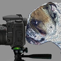 Portrait of a photographer (avatar) robert (Robert)
