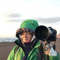 Portrait of a photographer (avatar) Верещака Елена (Elena Vereshchaka)